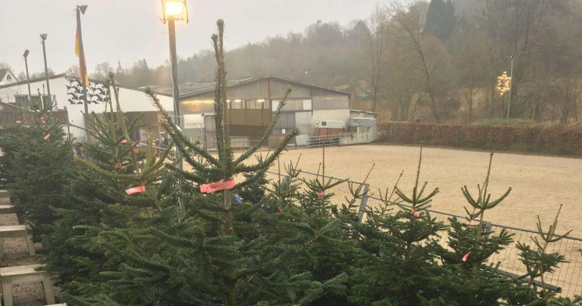 Weihnachstbaumverkauf
